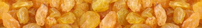 DrunkenRaisins :: Gin-soaked raisins :: Arthritis Relief :: Tasty Dessert!